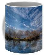 Winter Reflections Coffee Mug by Adrian Evans