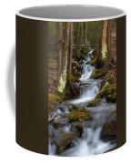 Winter Runoff Coffee Mug