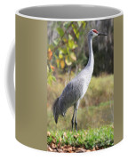 Winter Sandhill Crane Coffee Mug