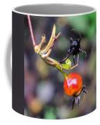 Winter Signal Rose Hip Coffee Mug