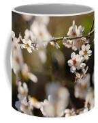 Winter Spring Almond Flowers Coffee Mug