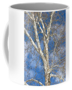 Winter Sycamore Coffee Mug