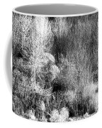 Winter Trees B And W 6 Coffee Mug