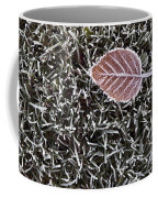 Winter With Frosted Leaf On Frozen Grass Coffee Mug