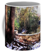 Winter Woods With Melting Snow Coffee Mug