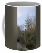 Winters Garden In Seattle  Coffee Mug