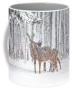 Winters Love Coffee Mug