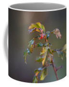 Winter's Oak Sapling Coffee Mug