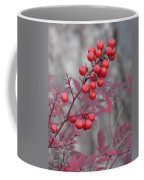 Winter's Red Coffee Mug