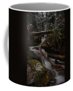 Winters Stream Flow Coffee Mug