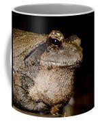 Wise Old Frog Coffee Mug