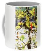 Wishing Tree At The Tomb Of Emperor Coffee Mug
