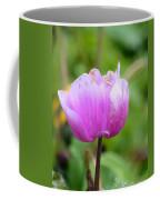 Wistfully Pink Coffee Mug