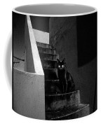 Witch's Cat In Moonlight... Coffee Mug