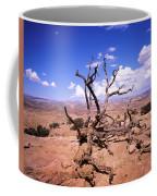 Withered Tree Paria Canyon Coffee Mug