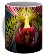Within The Lady Slipper Coffee Mug