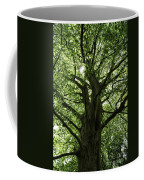 Witness Tree Coffee Mug