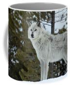 Wolf - Curiousity Coffee Mug