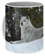 Wolf - Peaked Interest Coffee Mug