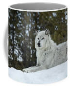 Wolf - Resting Coffee Mug