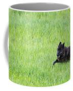 Wolf 889f Coffee Mug