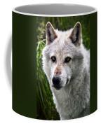 Wolf Alpha Male Coffee Mug