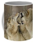 Wolf Display Coffee Mug