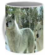 Wolf Gaze Coffee Mug