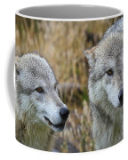 Wolf Glare Coffee Mug
