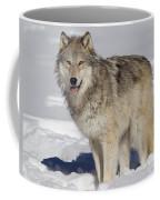Wolf In Snow Coffee Mug