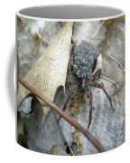 Wolf Spider And Spiderlings Coffee Mug