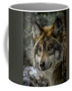 Wolf Upclose 2 Coffee Mug