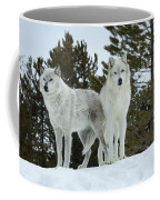 Wolves - Partners Coffee Mug