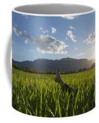 Woman Lying Down On A Green Field Coffee Mug