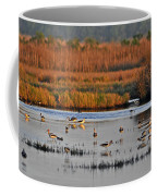 Wonderful Wetlands Coffee Mug by Al Powell Photography USA