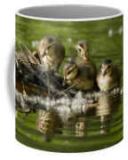 Wood Duck Babies Coffee Mug