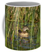 Wood Duck Drake Coffee Mug