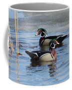 Wood Duck Drake Pair Coffee Mug