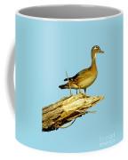Wood Duck Hen In Tree Coffee Mug