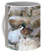 Wood Duck On Fountain Coffee Mug