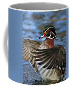 Wood Duck Standing Ovation Coffee Mug