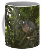 Wood Pigeon Coffee Mug