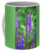 Wood Sage Coffee Mug