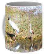 Wood Stork And Ibis And Heron Coffee Mug