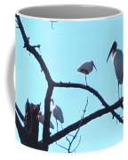 Wood Stork And Ibis Coffee Mug