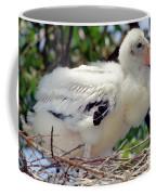 Wood Stork Nestling Coffee Mug