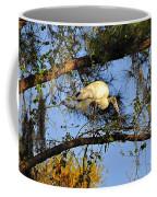 Wood Stork Perch Coffee Mug