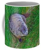 Woodchuck In Salmonier Nature Park-nl Coffee Mug
