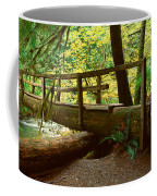 Wooden Bridge In The Hoh Rainforest Coffee Mug