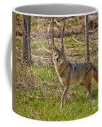 Woodland Coyote Coffee Mug